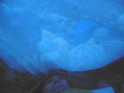 Dodo plein de belles images, dans la zone de bivouac près des grottes Bellevue