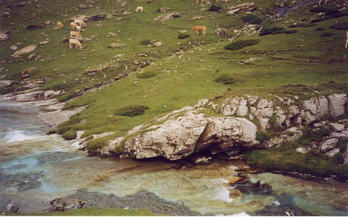 Retour vers le gave d Estaubé et ses belles couleurs, le plancher des vaches