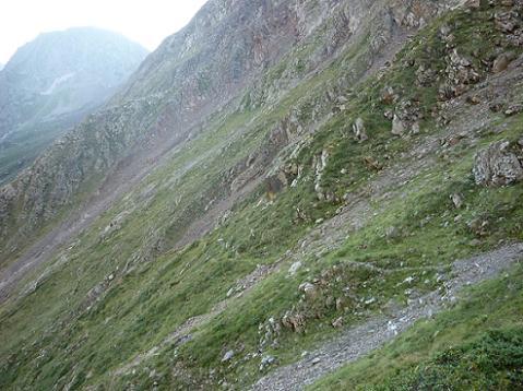 Le sentier devient aérien en remontant le cirque du fond de la vallée de la Pez