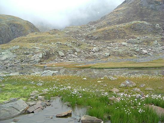 Passage près de l étang coté 2591 m